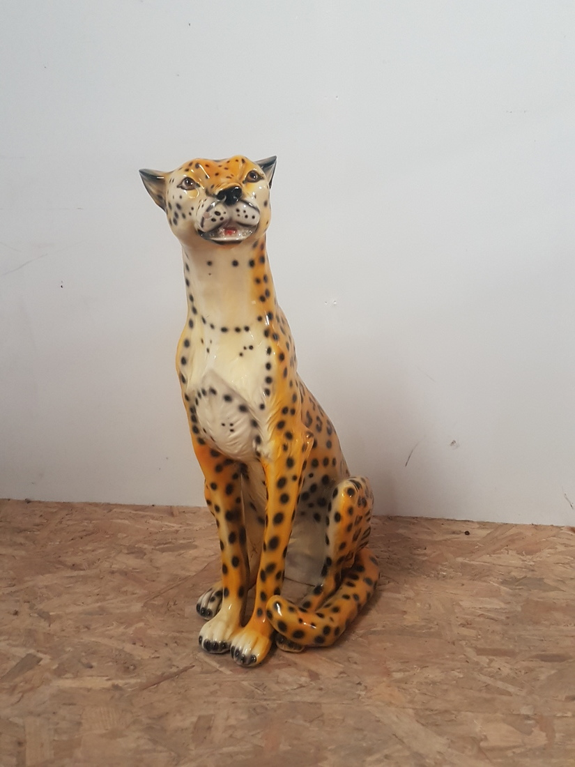 groot luipaard