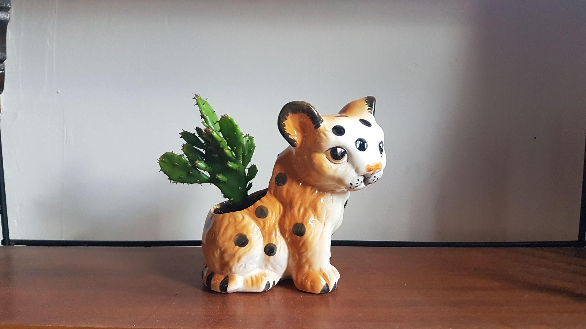 Luipaard bloempot